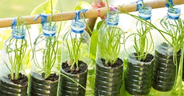 It S Free Great Idea For Making Container Garden From