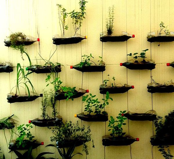 It's FREE .....Great Idea For Making Container Garden From