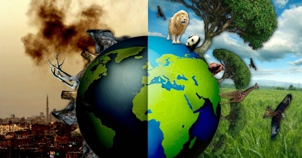 ways to save mother earth essay
