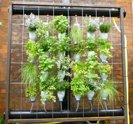 These Hanging Garden Planters Are A Great Low Cost Way To Start Your Own  Home Vegetable Garden.