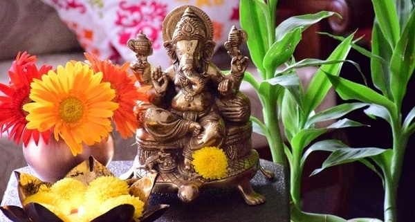 5 Flowers that lord Ganesha loves....! - Top 10 Plants ...