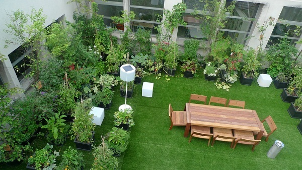 You Can Create Your Own Garden At Terrace   Garden Talk   NurseryLive  Wikipedia