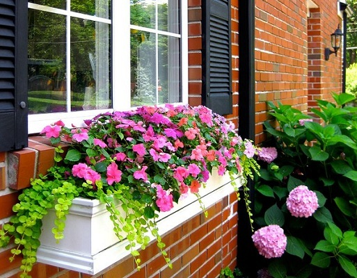Dress Up Your House With Adorable Window Boxes By Following This Simple  Guide On Creating Your Very Own Flower And Herbs Window Boxes At Home.