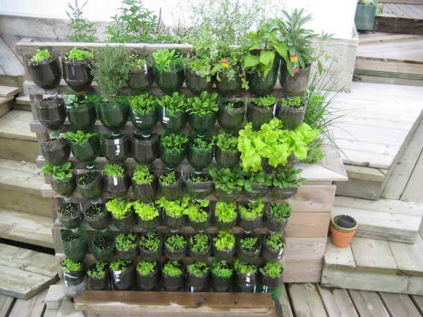 Small Space Garden Ideas stacked herb garden would be so cute out on a balcony or indoors Here Are The Most Beautiful Small Space Garden Ideas