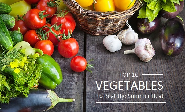 Top 10 Vegetables You Should Eat To Beat The Summer Heat!   Top 10 Plants    NurseryLive Wikipedia